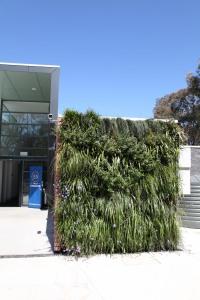 TH King Pavilion green wall